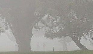Central Valley California Tule Fog