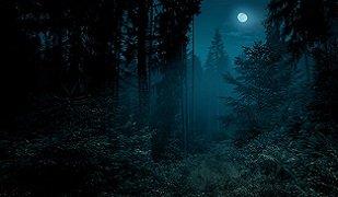 Turquoise Trail Haiku
